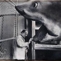 A lélek mélyéről - Ingmar Bergman