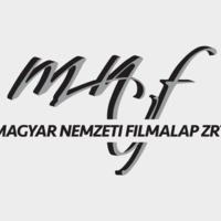 Új Filmszakmai Döntőbizottság a Filmalap élén