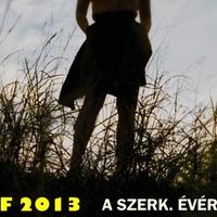 Best of 2013 - Akik mertek kísérletezni