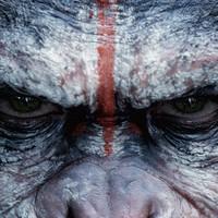 Gorilla-hadviselés - A majmok bolygója - Háború