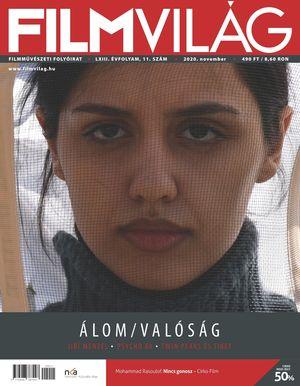 fv2011.jpg