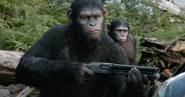 majmokforradalom.jpg