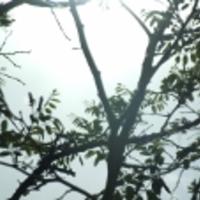 Csipkerózsika történetének szépséges tanításai