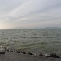 Első halak a Balatonon