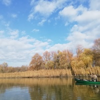 Évi 1 Tisza-tó...(kipipálva)