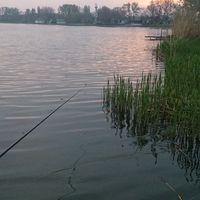 Szelidi RákkenRoll - avagy a FishnDirt style kötelez