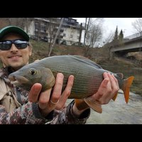 Fly Fishing in Bled Region - Fish&Dirt Season Start '17