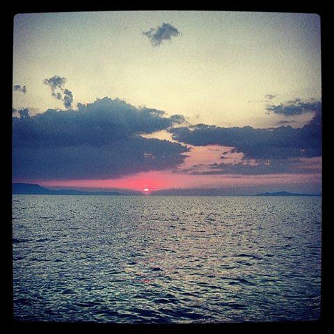 hajnal.jpg