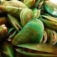 Óvjuk ízületünket zöldkagylóval