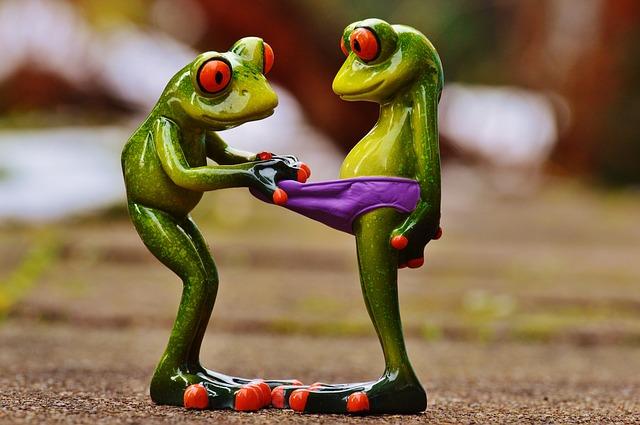 frogs-1158958_640.jpg