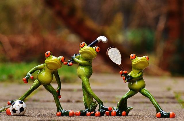 frogs-1212209_640.jpg