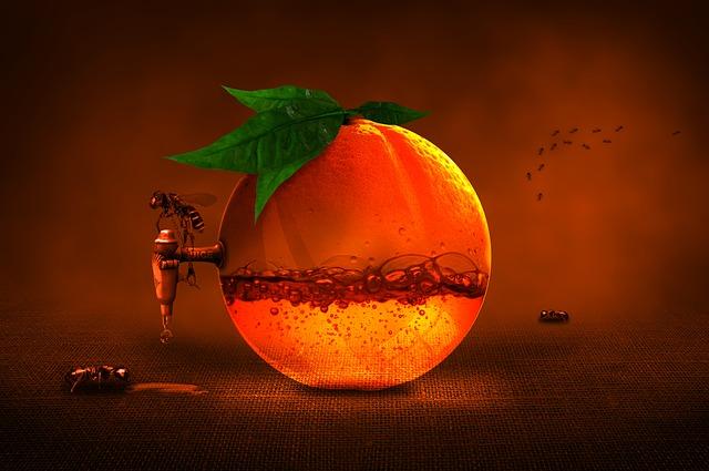 orange-1173991_640.jpg
