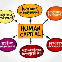 A cégek fő értéke már nem az eszköz, hanem a szellemi tőke