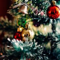 Karácsonyfa trendek 2017-ben