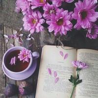 Tavasz, költészet, kávéház