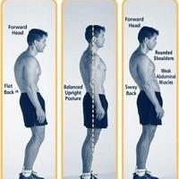 A testtartás szerepe a testépítésben