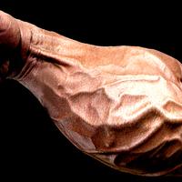 Satuerős szorítás és edzett acél ujjak