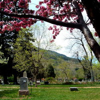 cemetery in spring