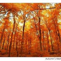 Autumn's memorial