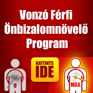vonzoferfi-program.png