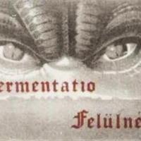 Már zajlanak a próbák - Tavasszal Fermentatio koncert Egerben