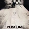 Possum (2018)