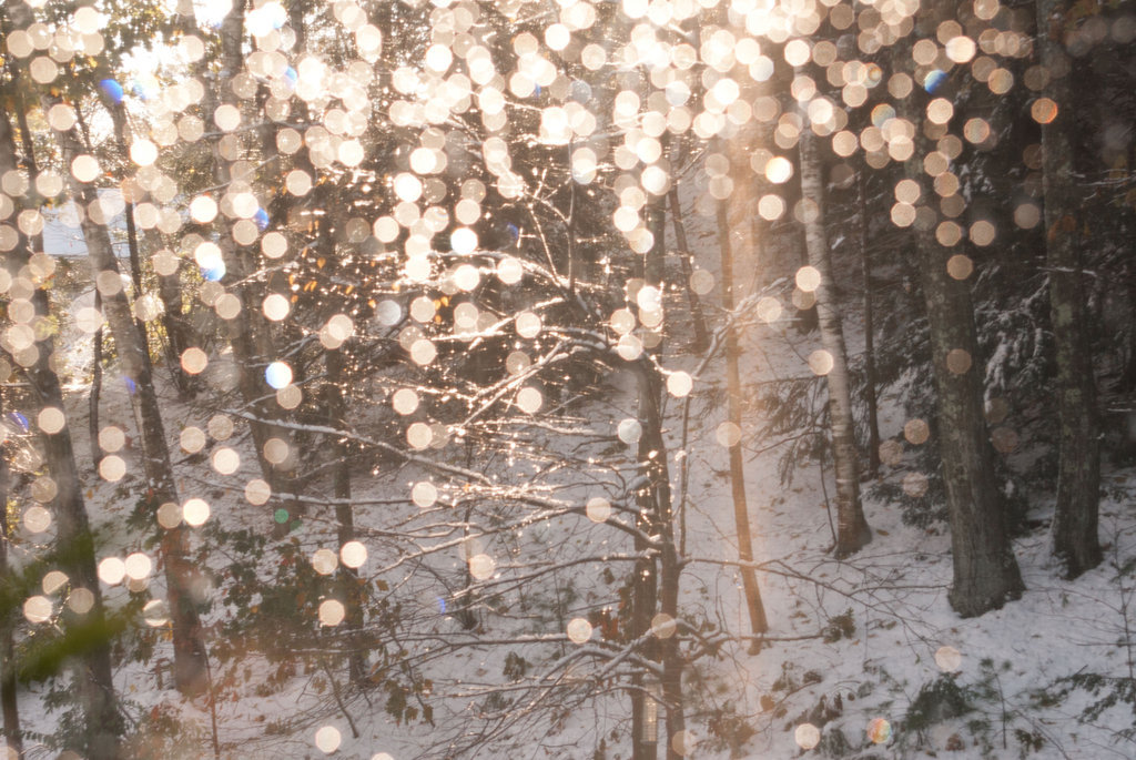 tumblr_static_beautiful-fairy-lights-winter-favim_com-275869-2665.jpg
