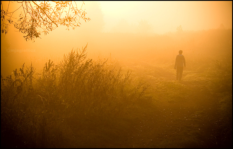 Lonely_morning_by_mjagiellicz.jpg