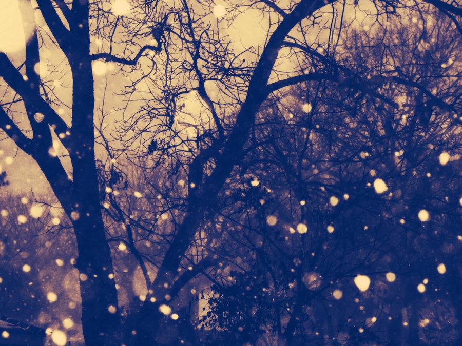 Vintage_Snowfall_by_hannahroseison.jpg