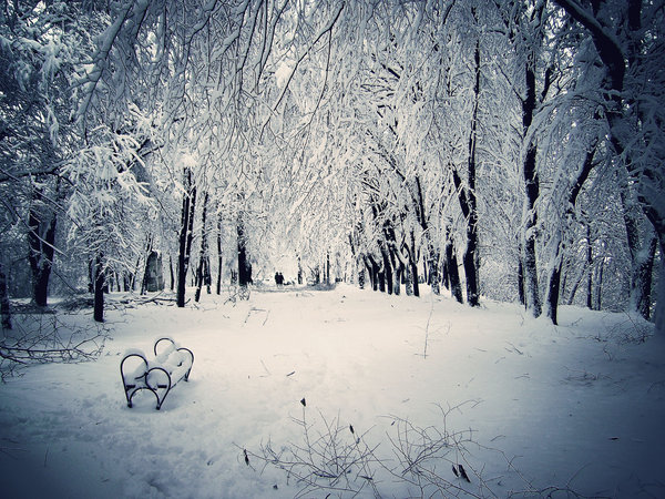 Winter_Tale_by_Valcom2the.jpg