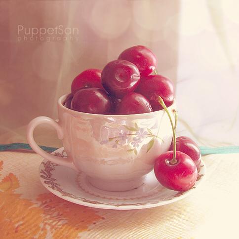 cherry_cup_by_puppetsan-d53o39c.jpg