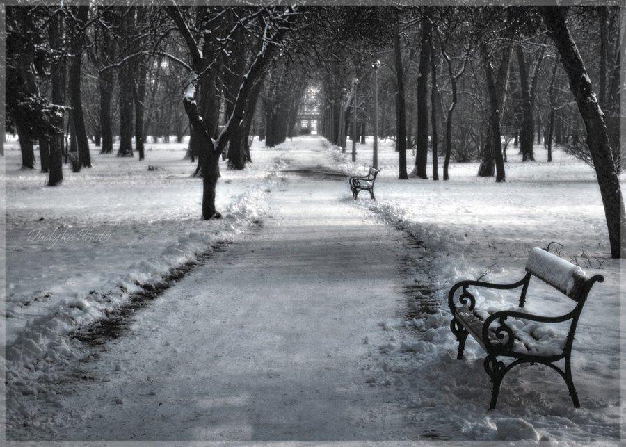 colorless_winter_by_dudykaa-d359glt.jpg