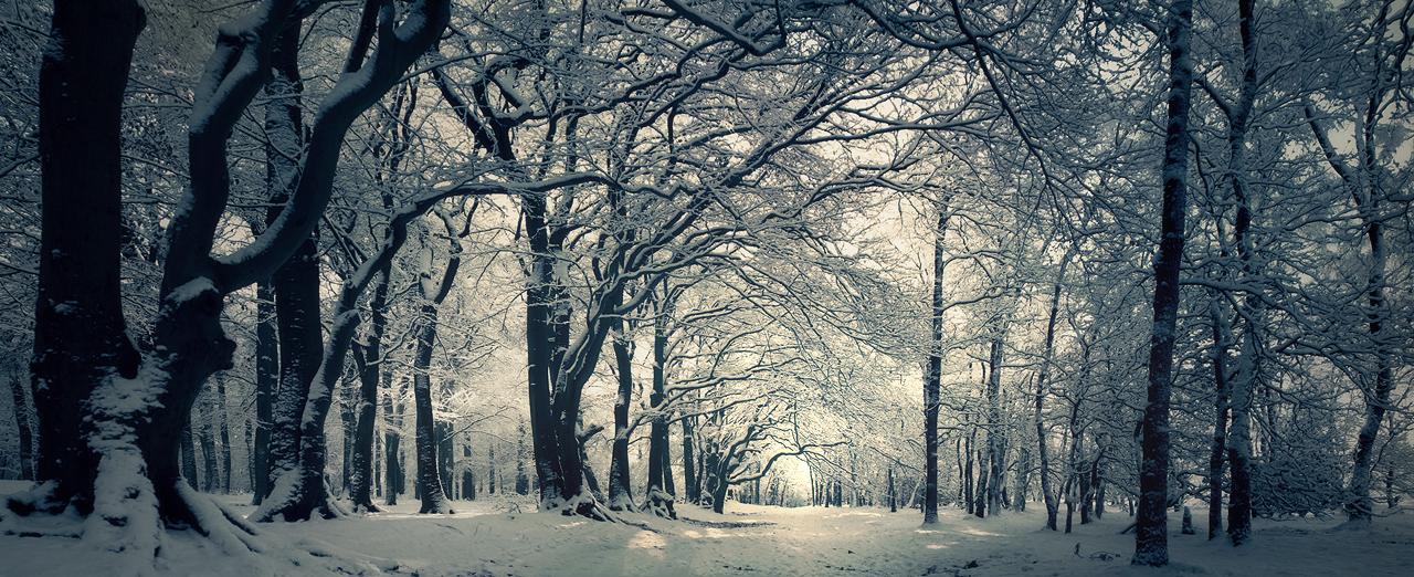 street_of_snow_by_burning_liquid-d3avrv6.jpg