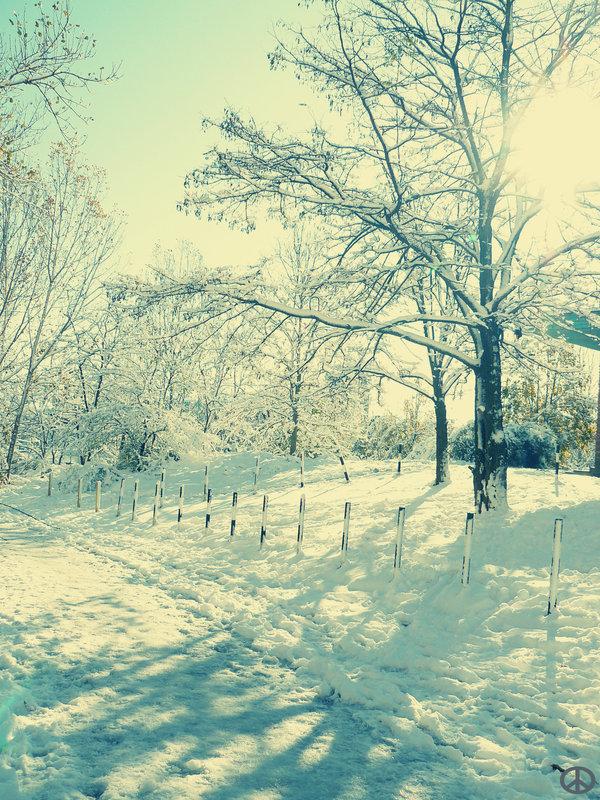 winter_komm_by_igloolita.jpg