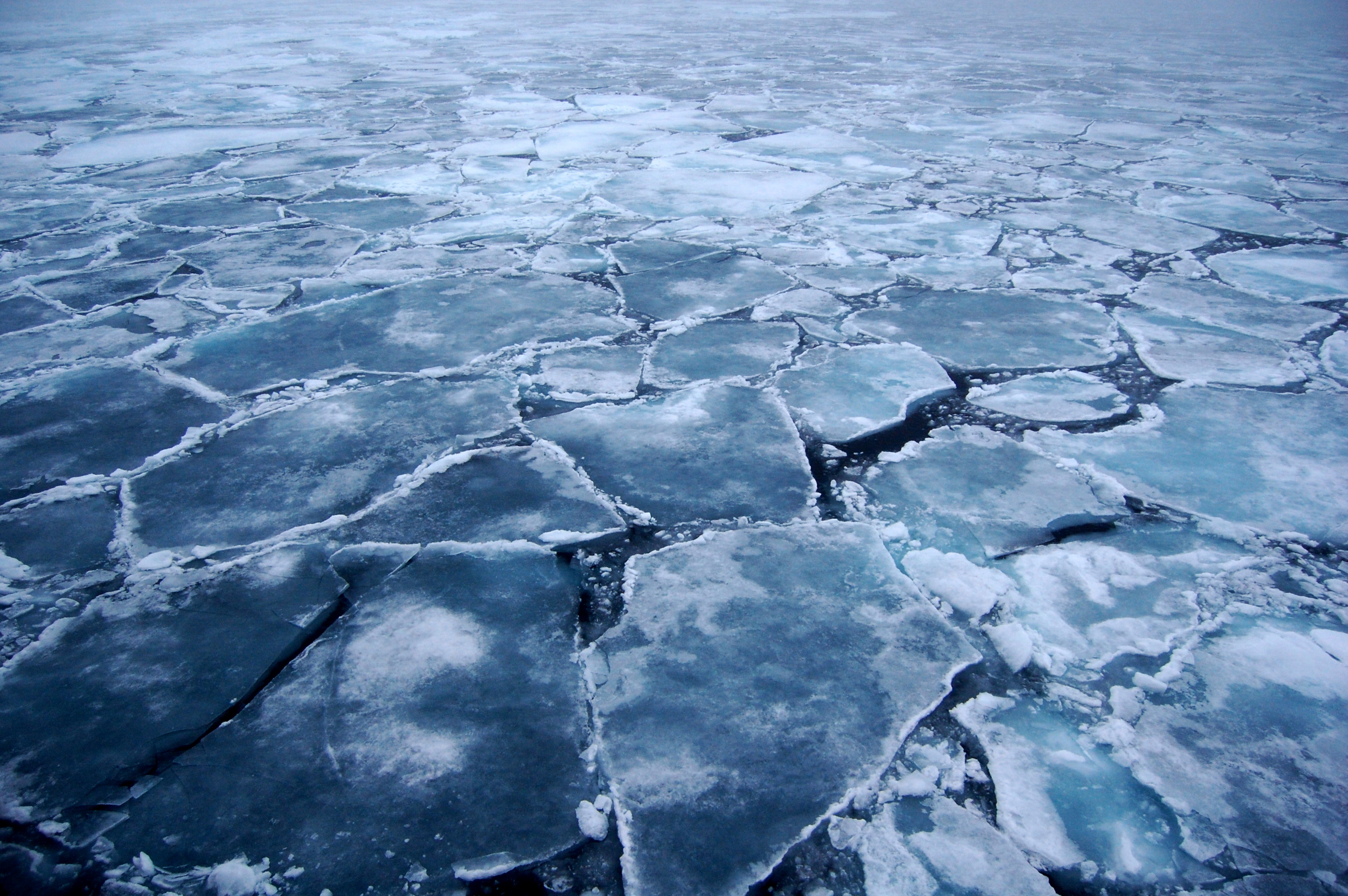 arctic_ice_2.JPG