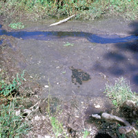 Titokban szennyezné az ivóvíz-készletet a kormány!