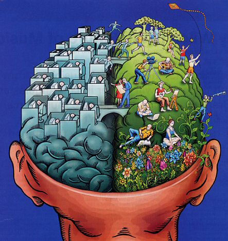 right-brain-left-brain-illustration.jpg