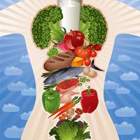 Lehet, hogy a táplálkozási típus is szerepet játszik az eredményes fogyásban?