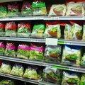 A saláta kiváló fogyókúrás étel, azonban fertőzést is okozhat!