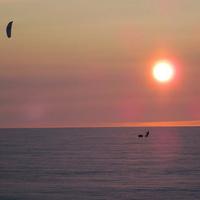 Arctic-kite: kite, meg sí, meg Grönland