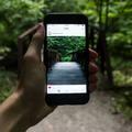 5 oldal, ahol ingyenes képekkel telítheted meg az oldaladaidat