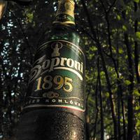 Soproni 1895