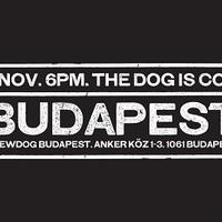 Pénteken nyit a BrewDog Bar Budapest!