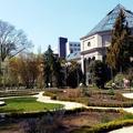 Tavasz a Füvészkertben