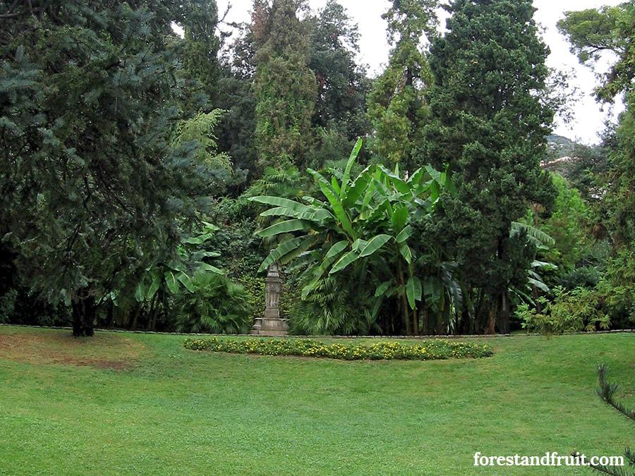 Park Angolina