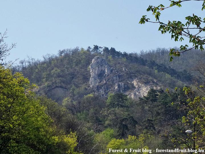 2017. április - Zugliget, Tündér-szikla