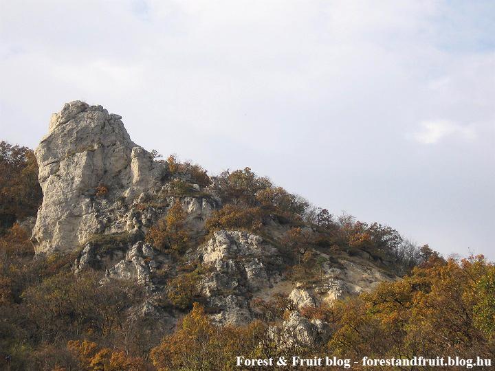 2008. november - Zugliget, Tündér-szikla