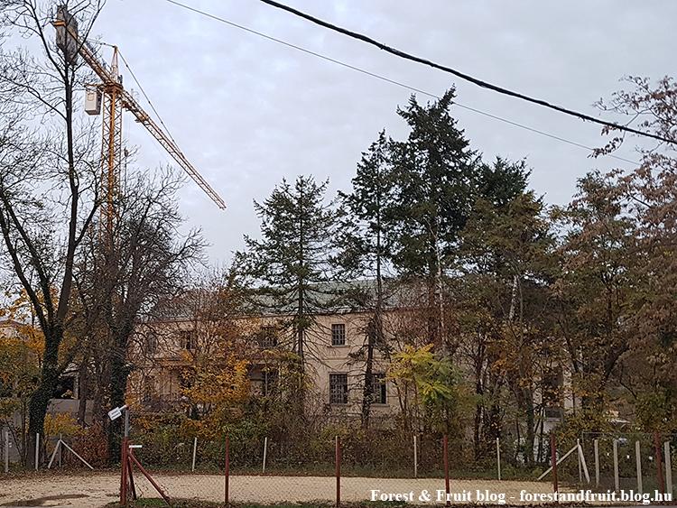 2018. november - Zugliget, Fácános