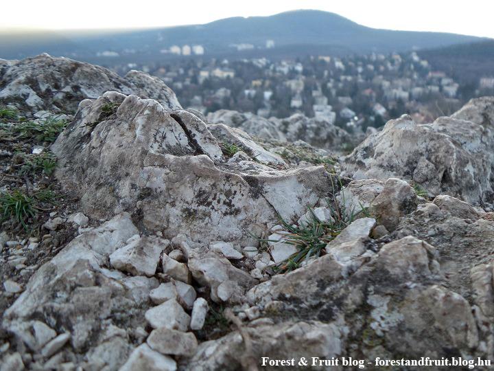 2017. december - Apáthy-szilka, János-hegy, panoráma