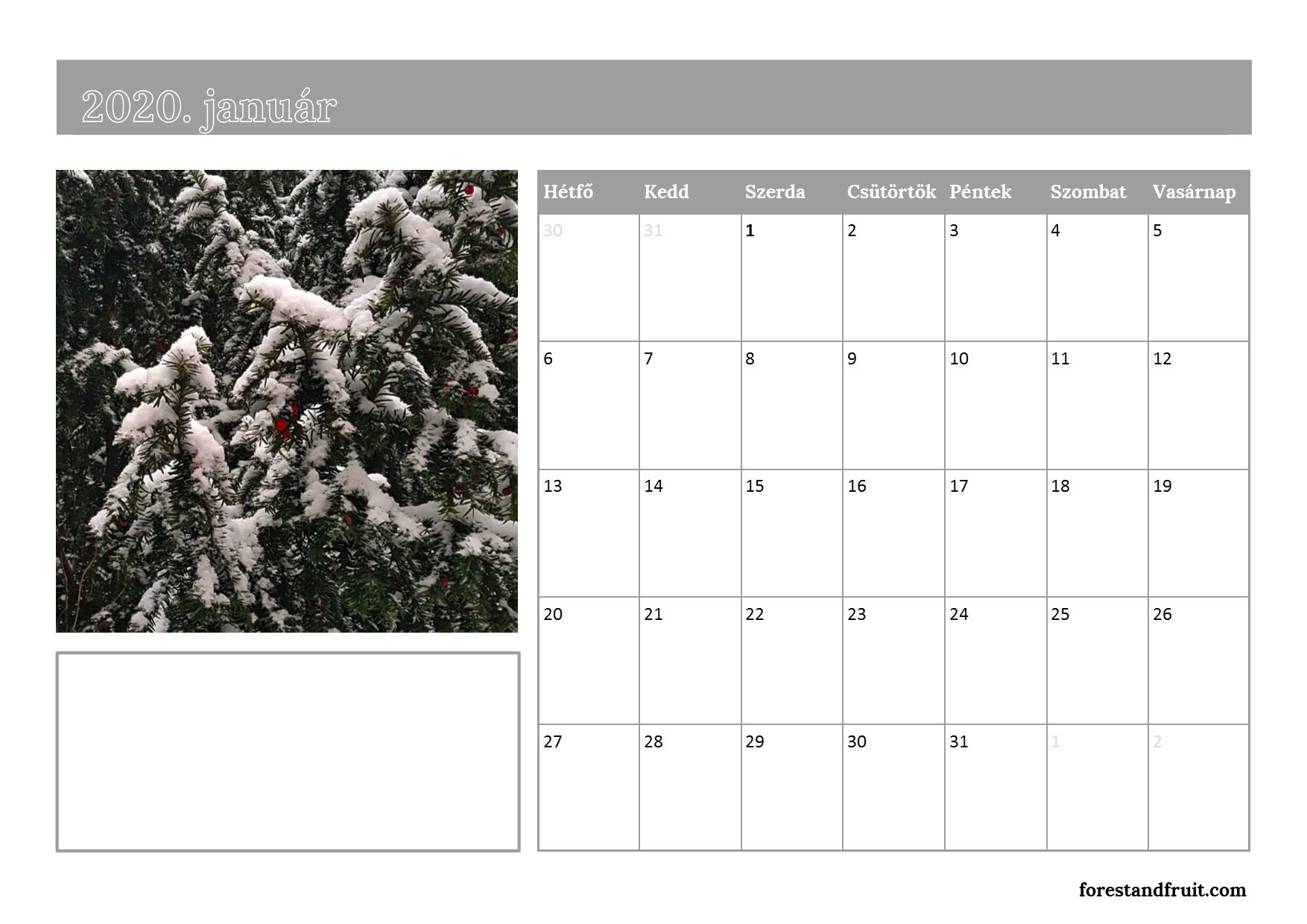 forestandfruitnaptar_2020_januar.jpg